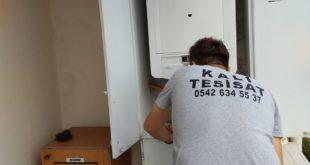 Photo of Darıca Petek Temizleme